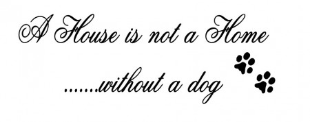 A house is not a