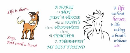 Life is better with horse